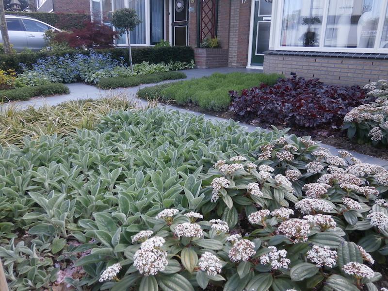 visie tuinen voorbeelden
